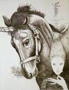 Taga_unicorn_large